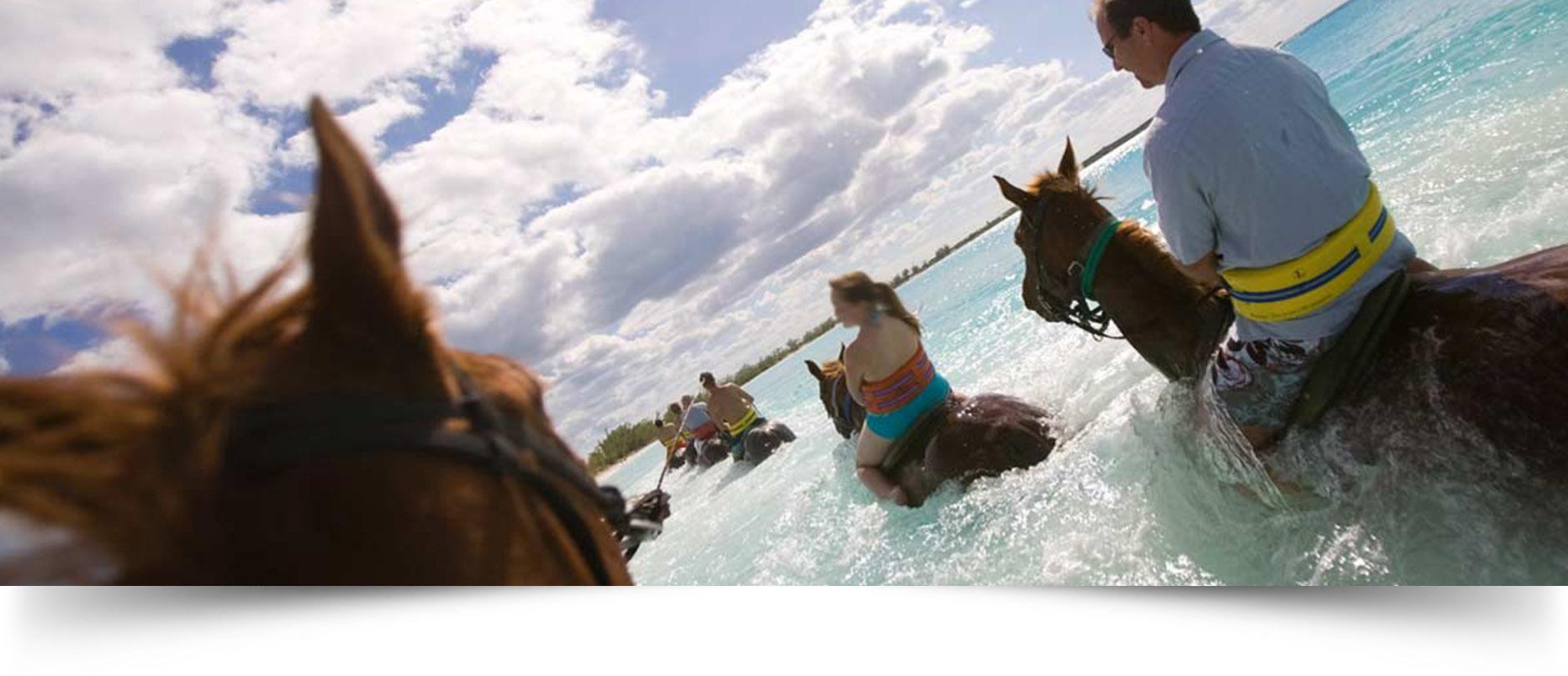 horses-slide